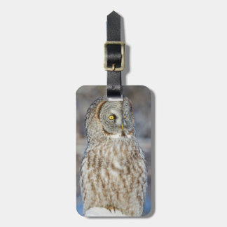 Wyoming, Sublette County, Great Gray Owl 1 Luggage Tag