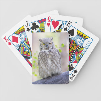 Wyoming, Sublette County, Great Horned Owl 2 Bicycle Playing Cards