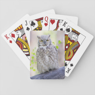 Wyoming, Sublette County, Great Horned Owl 2 Poker Deck