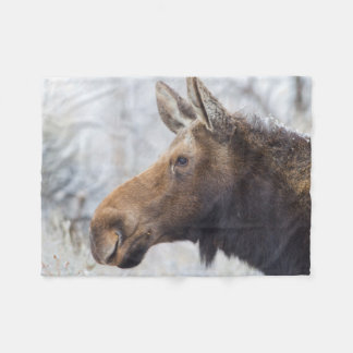Wyoming, Sublette County, head shot of cow Moose Fleece Blanket