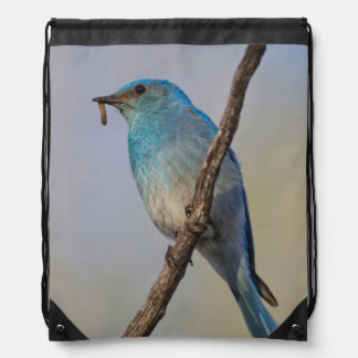 Wyoming, Sublette County, Male Mountain Bluebird Drawstring Bag