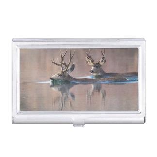 Wyoming, Sublette County, Mule deer bucks Business Card Holder