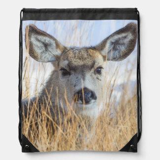 Wyoming, Sublette County, Mule Deer doe resting Drawstring Bags