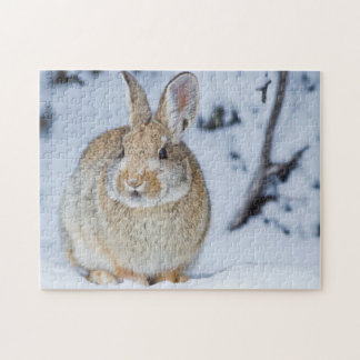 Wyoming, Sublette County, Nuttall's Cottontail 2 Jigsaw Puzzle