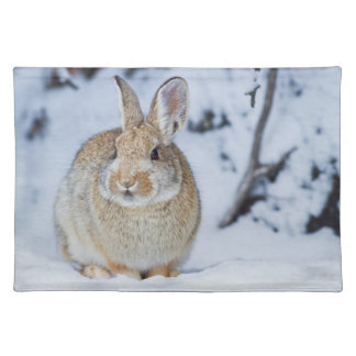 Wyoming, Sublette County, Nuttall's Cottontail 2 Placemat