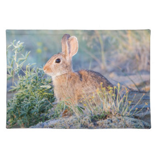 Wyoming, Sublette County, Nuttall's Cottontail 3 Placemat