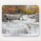 Wyoming, Sublette County, Pine Creek flowing Mouse Mat