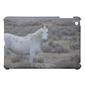 wyoming, united states of america cover for the iPad mini