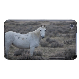 wyoming, united states of america iPod Case-Mate cases