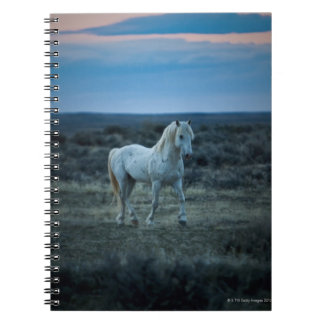 wyoming, united states of america notebook
