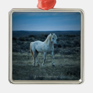 wyoming, united states of america Silver-Colored square decoration