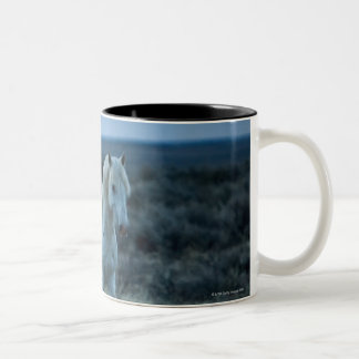 wyoming, united states of america Two-Tone coffee mug