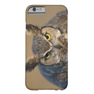 wyoming, usa barely there iPhone 6 case
