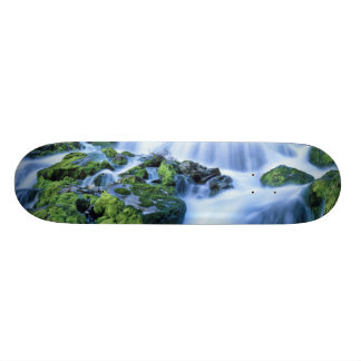 Wyoming. USA. Periodic Spring during period of 21.3 Cm Mini Skateboard Deck