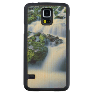 Wyoming. USA. Periodic Spring during period of Carved Maple Galaxy S5 Case