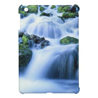 Wyoming. USA. Periodic Spring during period of iPad Mini Covers
