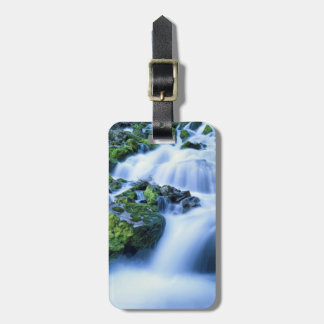 Wyoming. USA. Periodic Spring during period of Luggage Tag
