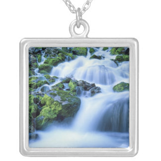 Wyoming. USA. Periodic Spring during period of Silver Plated Necklace