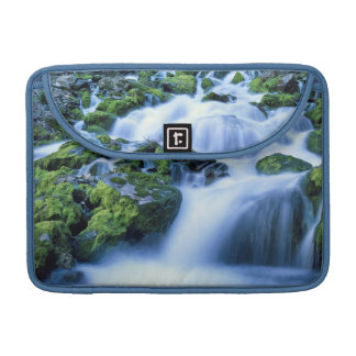 Wyoming. USA. Periodic Spring during period of Sleeves For MacBook Pro