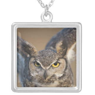 Wyoming, USA Silver Plated Necklace