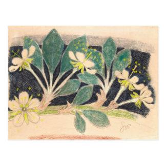 Wyspianski, Cherry Flowers, 1903 Postcard