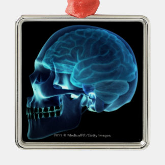 X-ray of the brain inside a skull christmas ornament