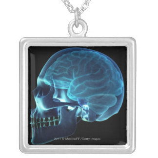 X-ray of the brain inside a skull silver plated necklace