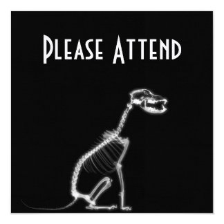 X-RAY PUPPY DOG SKELETON SITTING - B&W 13 CM X 13 CM SQUARE INVITATION CARD
