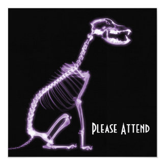 X-RAY PUPPY DOG SKELETON SITTING - PURPLE CARD