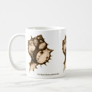 X-Ray Seashell Mug with Pink Murex