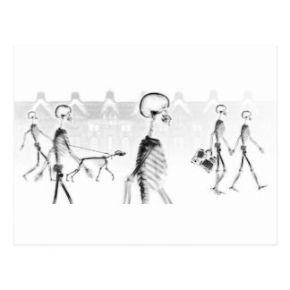 X-Ray Skeletons Afternoon Stroll Neg BW Postcard
