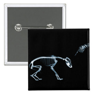X-Ray Skeletons Bad Dog Blue 15 Cm Square Badge