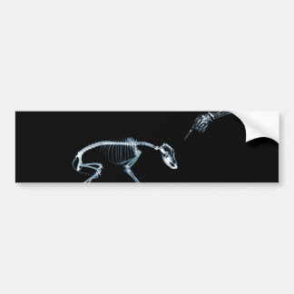 X-Ray Skeletons Bad Dog Blue Bumper Stickers