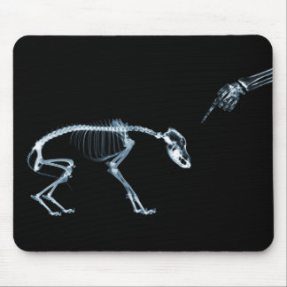 X-Ray Skeletons Blue Bad Dog Mouse Mat