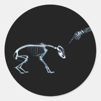 X-Ray Skeletons Blue Bad Dog Round Sticker