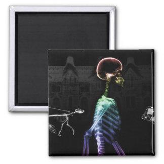 X-Ray Skeletons Midnight Stroll - B&W & Rainbow Square Magnet