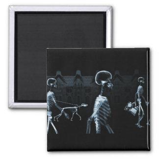 X-Ray Skeletons Midnight Stroll Black Blue Square Magnet