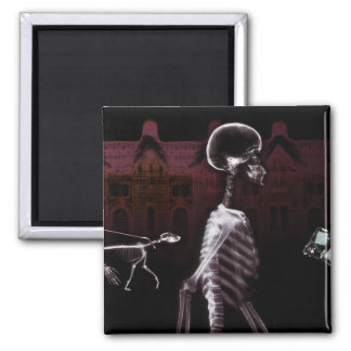 X-Ray Skeletons Midnight Stroll Square Magnet