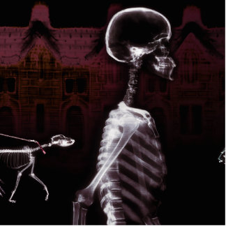 X-Ray Skeletons Midnight Stroll Standing Photo Sculpture