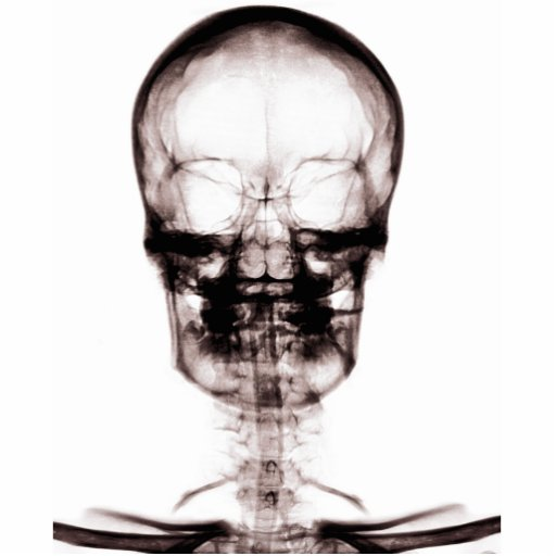 X-RAY VISION SKELETON SKULL - ORIGINAL CUT OUT