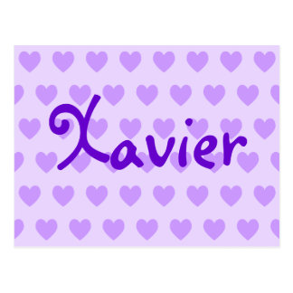 Xavier in Purple Postcard