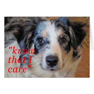 Xena- Know I Care Cards
