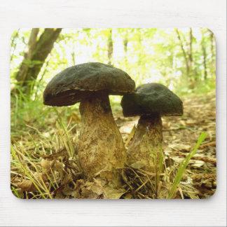 Xerocomus pruinatus Mushroom Mouse Mat