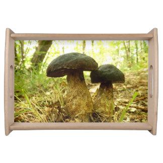 Xerocomus pruinatus Mushroom Serving Tray
