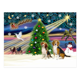 Xmas Magic Beagle Pair Postcard