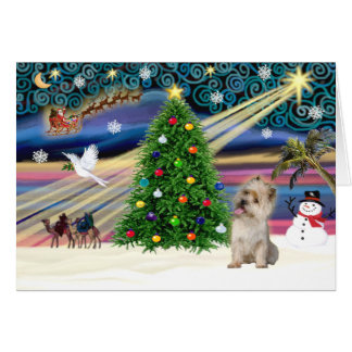 Xmas Magic-Cairn wheaten Card