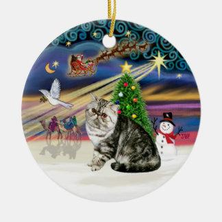Xmas Magic - Exotic Short Hair Tabby Cat Christmas Ornament