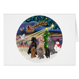 Xmas Magic (R) - 6 Standard Poodles Card