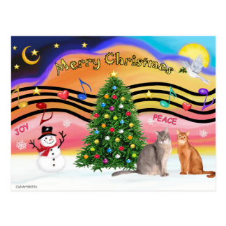 Xmas Sunrise 2 - Two Abyssinian cats Postcard