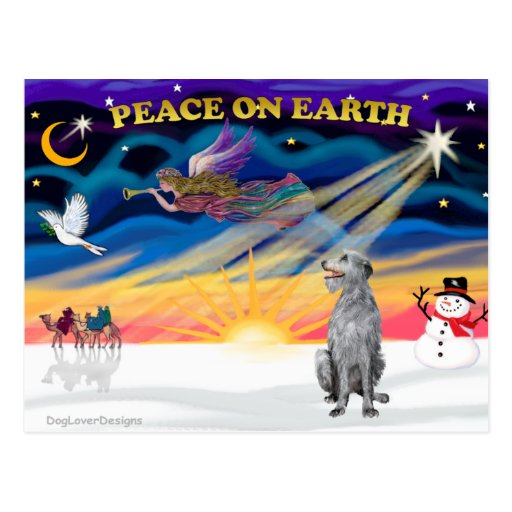 Xmas Sunrise - Scottish Deerhound Postcard